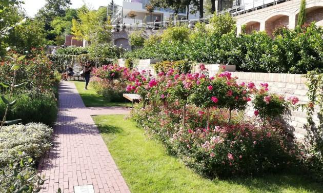 Csodás Magyarország: Budapest legszebb kertjei