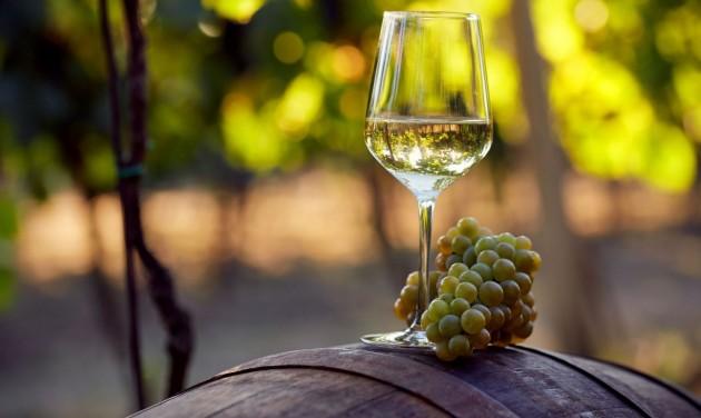Jön az Olaszrizling Október Nagykóstoló 80 termelő boraival