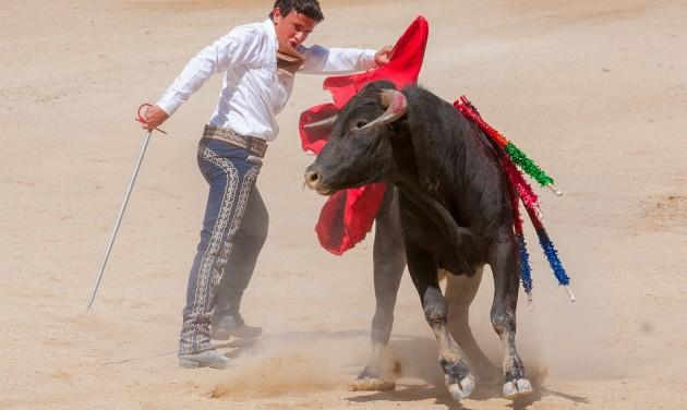 Ismét lesz bikaviadal Mallorcán?