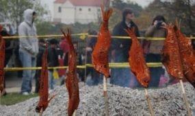 Hétvégén rendezik a tihanyi Garda Fesztivált