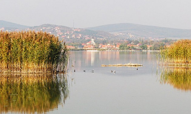 Természetvédelmi területek újulnak meg