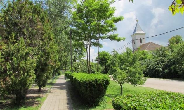 Új életre kel egy sziget a Tisza-tó kellős közepén
