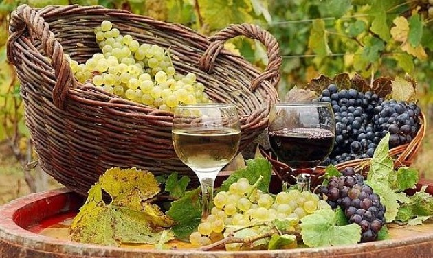 Folyamatosan javul a magyar borok minősége