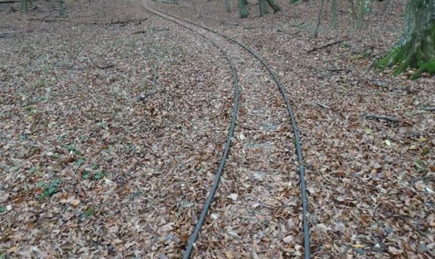 Adalékok a Csarna-völgyi kisvasút ügyéhez