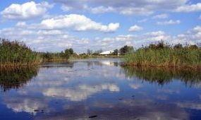 Természetvédelmi fejlesztések és stadionrekonstrukció Székesfehérváron