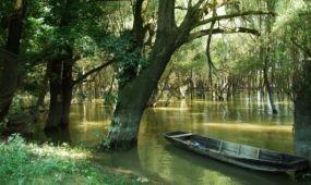 Fejlesztik a Natura 2000 területeket a Duna-Dráva Nemzeti Parkban