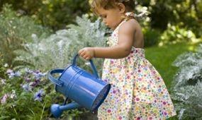 Bemutatókertek és kertészeti újdonságok a Gardenexpon