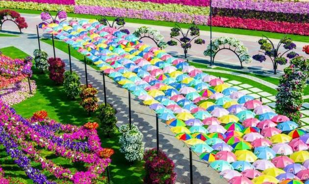 Tavasz Dubajban: kültéri programok a nyári forróság előtt