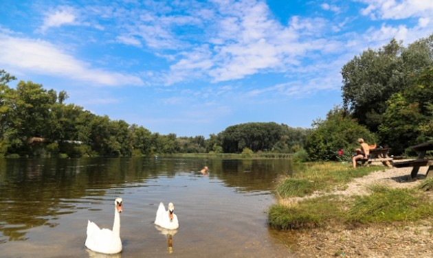 Bécsi nyár természetes vízpartokon