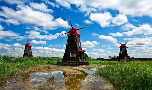 Nevet váltana Hollandia