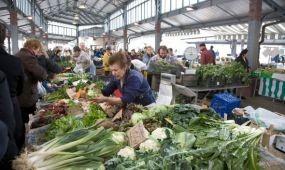 Torinó lehet Olaszország első vegán városa