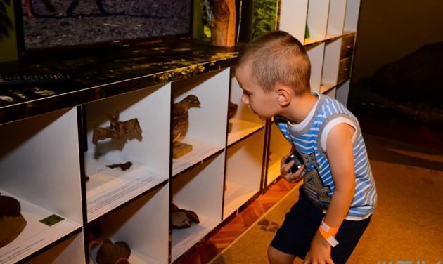 Sátoraljaújhelyi lett az év legjobb múzeuma