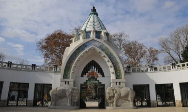 Népszámlálást tartottak a budapesti állatkertben