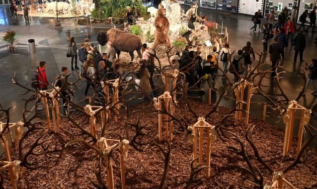 Indul a vadászati világkiállítás jószolgálati programja