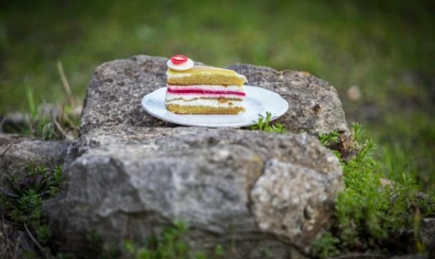 Tökmagos lett Magyarország tortája