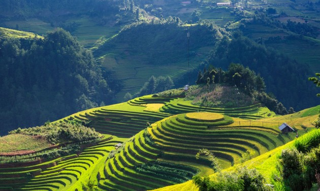 Vietnamba utazni minimum 10 napra érdemes