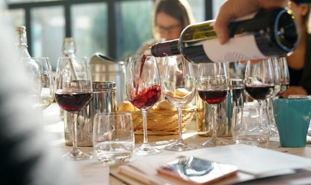Ingyenes borismereti képzéssorozatot indít az MTÜ