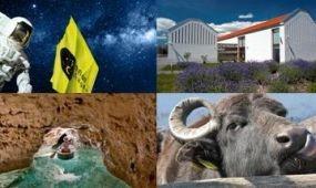 Újra meghirdeti Nemzeti Parki Termék pályázatát a Balaton-felvidéki Nemzeti Park