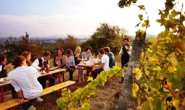 Újabb lehetőséget kap az etyeki borturizmus