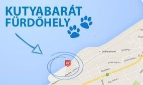 Földváron is fürödhetnek kutyák a Balatonban