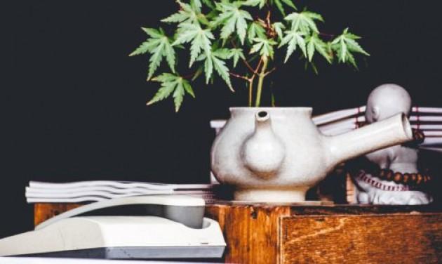 Felfutóban a marihuána-turizmus