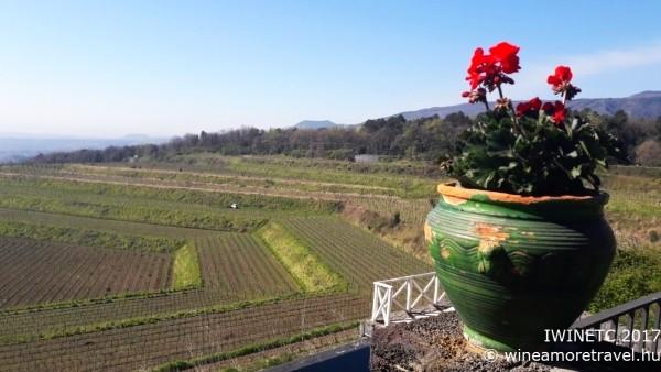Régi és új bordesztinációkról Szicíliában