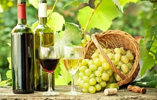 Taroltak aranyérmes boraink Csehországban