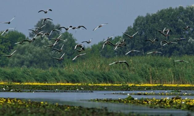 Szezonra kész a Tisza-tó