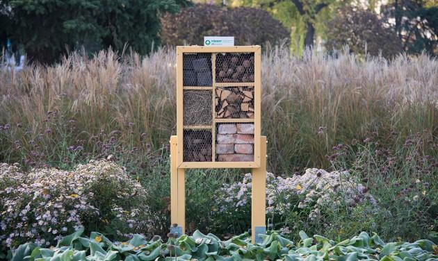 Bővül a szállodalánc: újabb rovarhoteleket telepített a FŐKERT