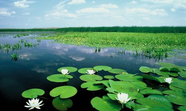 Kitűnő nyári szezont zárt a Tisza-tó térsége
