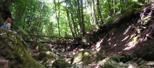 Megújult az Árpád-kilátó és a Kéktúra útvonal egyik szakasza