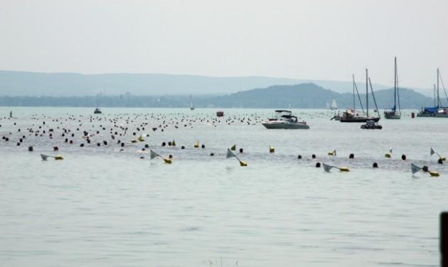 Tízezernél is többen a Balaton-átúszáson