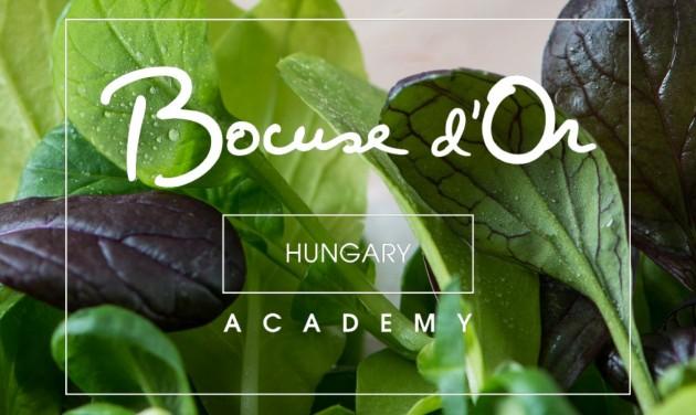 Még egy hétig lehet pályázni a Bocuse d'Or versenyre