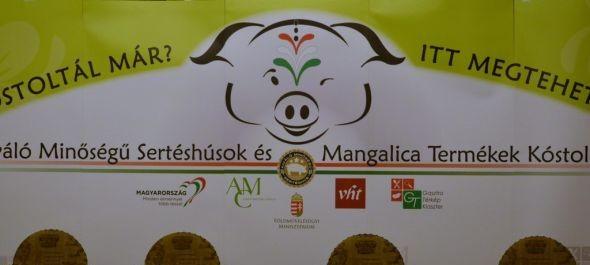 Kiváló minőségű sertéshúst kóstoltatnak a vendéglátóhelyek