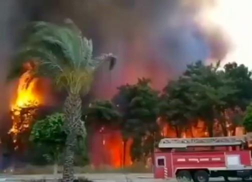 Erdőtűz pusztít a török riviéra közelében