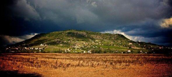 Rompincéket mentettek meg a Somló-hegyen