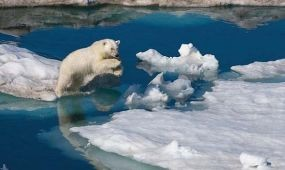 Rekordkicsi az Északi-sark jégtakarója