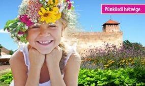 Háromnapos fesztivállá bővül a Gyulai Virágok Vasárnapja