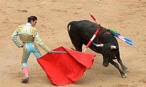 Mallorca fővárosa nem akar több bikaviadalt