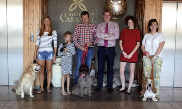 Az elveszett kutyák hazatalálását segíti a Caramell
