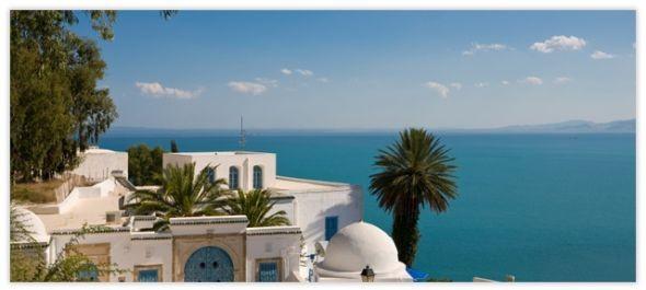 Tunézia: külföldi díszvendég impozáns tervekkel