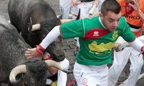 Ökleltek a bikák Pamplonában