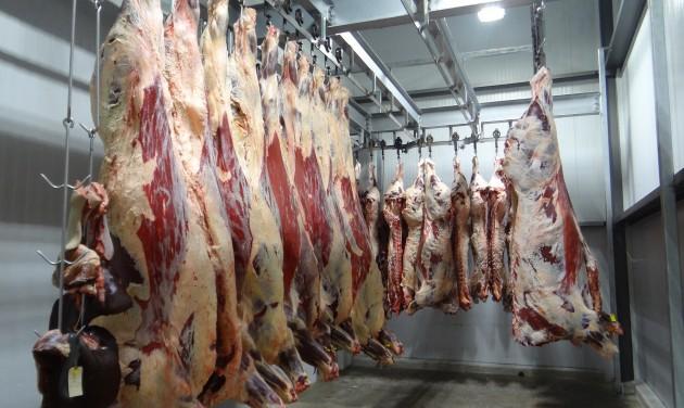 Flandria is betiltotta a halal és kóser vágást