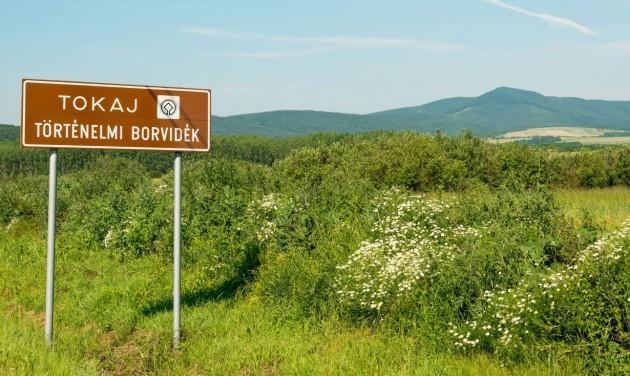 150 milliárd forintból fejlesztik Tokaj-Hegyalját és a zempléni térséget