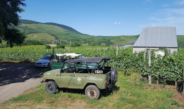 Eger legnevesebb borászataival újul meg a Szépasszony-völgy