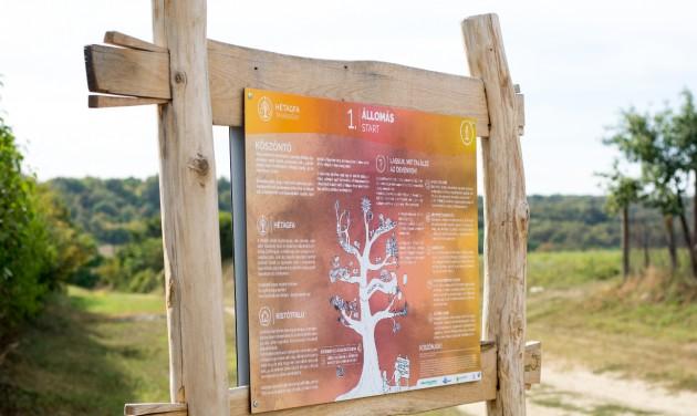 Két és fél kilométernyi felfedezés az új Hétágfa tanösvényen